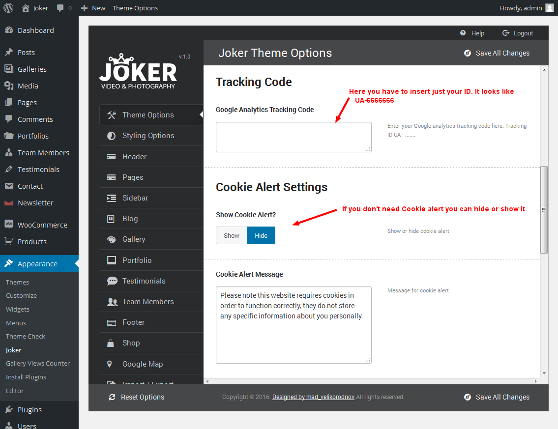 Google themes error message