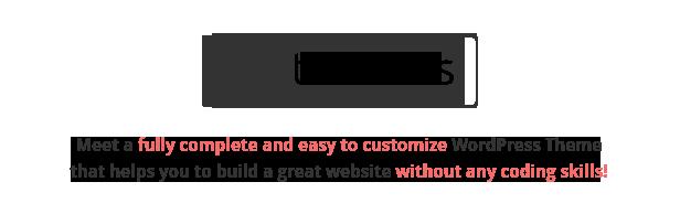 Terminus - Responsive Multi-Purpose WordPress Theme - 2