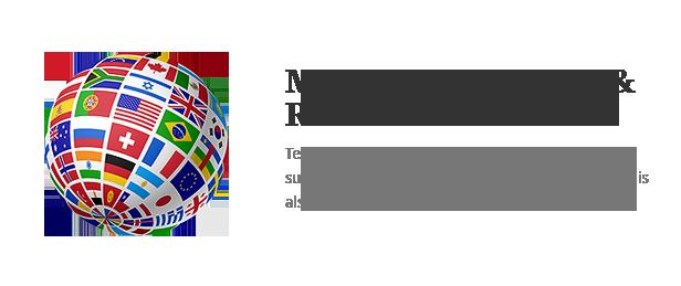 Terminus - Responsive Multi-Purpose WordPress Theme - 9